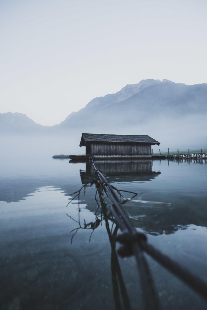 Tappenkarsee, Jägersee, Jaegersee, Kleinarlbach, Schwan, Morgenstunden, Morgennebel, Salzburg, Austria, lakeside